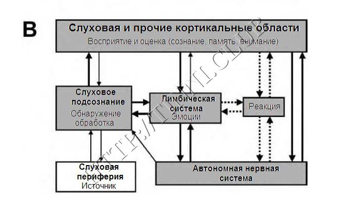Развитие порочного круга. Часть B