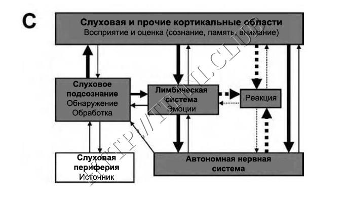 Развитие порочного круга. Часть C