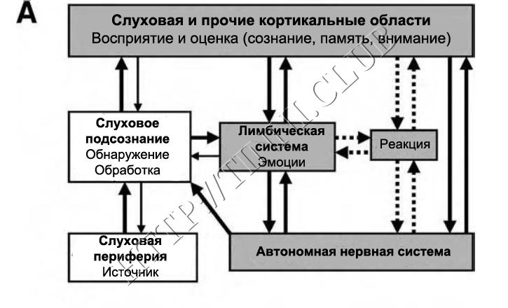 Сознательная и подсознательная системы. Обратные связи, влияющие на осведомленность о сигнале тиннитуса и связанные с ним когнитивные процессы.