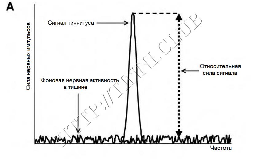 Сигнал тиннитуса в сравнении с фоновой нервной активностью. Часть A