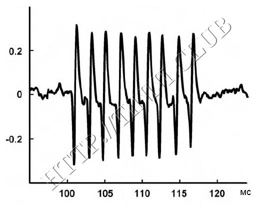 Всплески нейронной активности в нижнем двухолмии у крыс